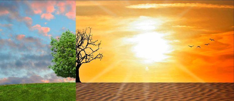 Cambio climático. Protocolo de Kyoto.