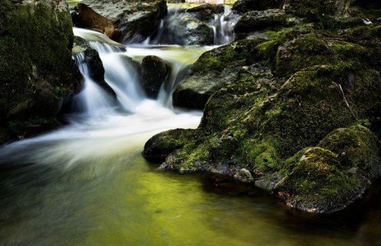 Vota por la conservación del río Glorieta, Mont-ral y Alcover (Tarragona, España)